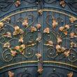 Les avantages de l'installation d'une porte en fer pour votre maison